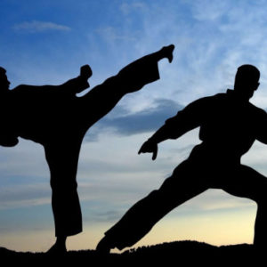 Karate Fight Silhouette